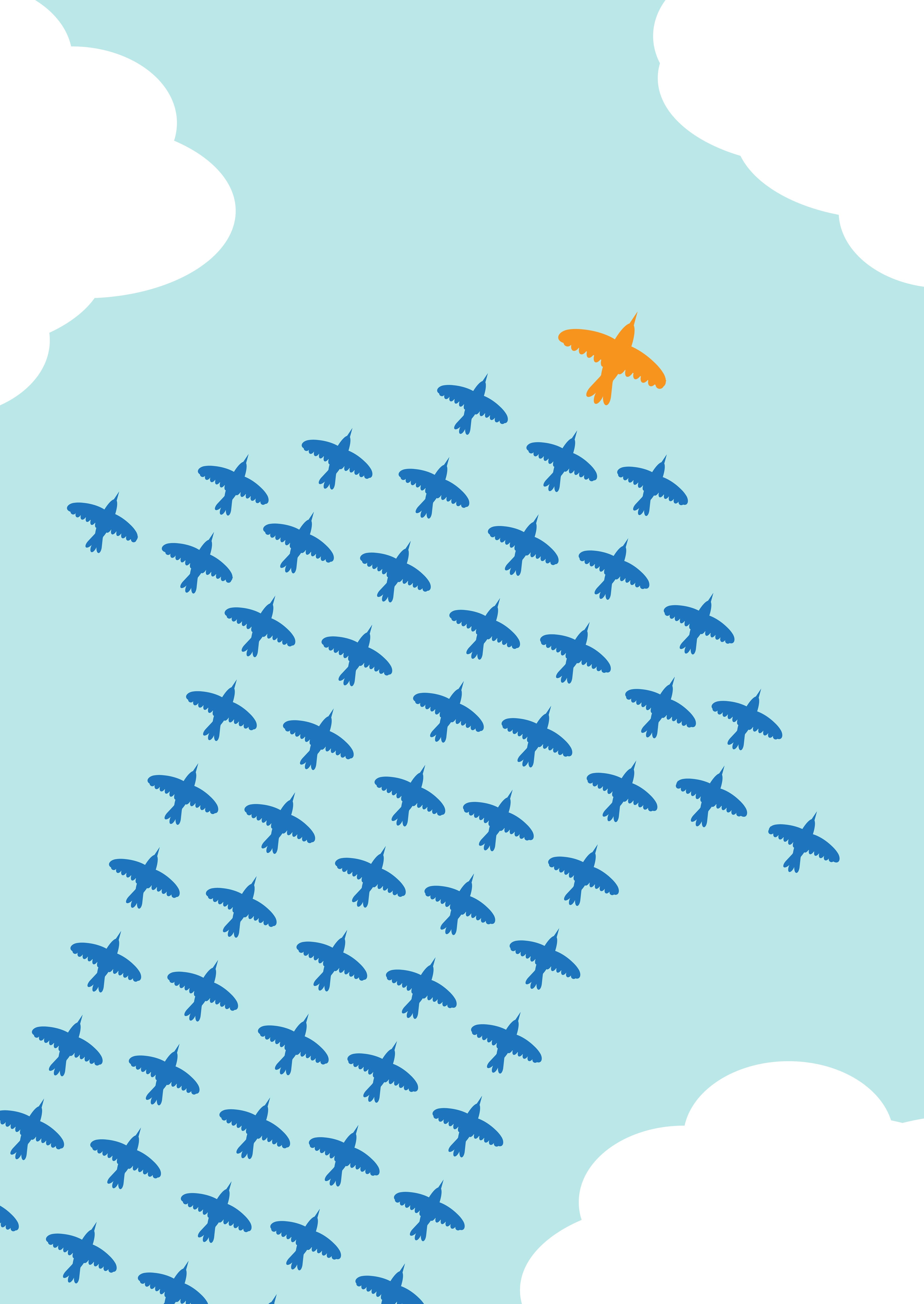 Leadership_birds_207217240.jpg